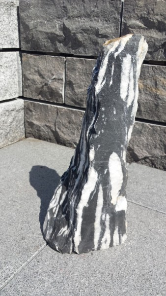 Taurus-Monolith Zebra